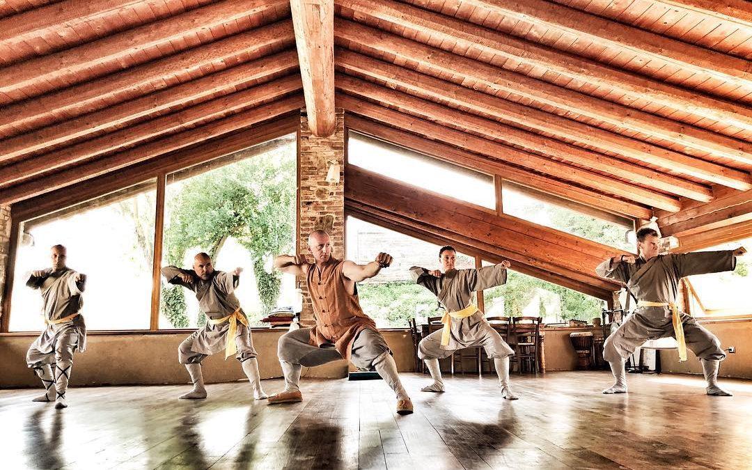Shaoness. Il metodo Shaolin per il business.